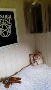 Dunderbeistbildet, det heklede sengeteppet fra farmor, en bamse og en søt kaninpute.