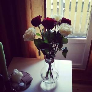 """Fine roser i min """"Edison Bulb Vase""""."""